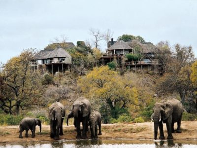 Leopard Hills Private Game Reserve image gallery